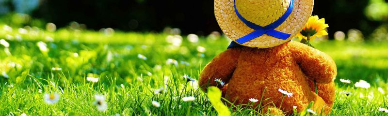 Teddy Bear Mother Goose Picnic